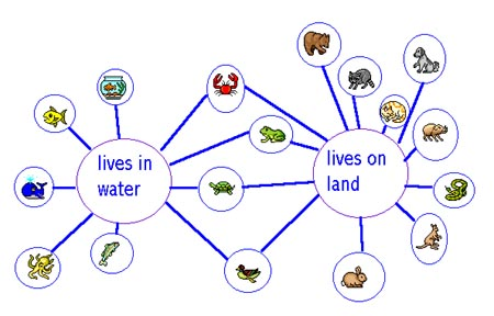 PSJA Tech Trainer Thinking Maps